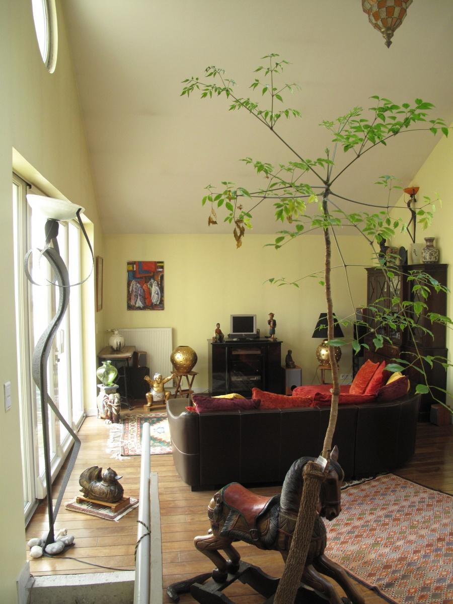 Pantin, maison duplex+loft, 8 pièces, 196 m², atypique, lumineux et spacieux